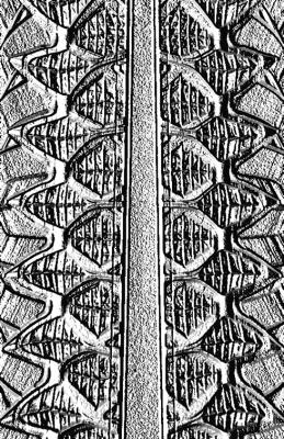 La Arquitectura de tus Huesos